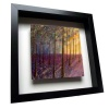 Bluebell Woods - Framed Tile