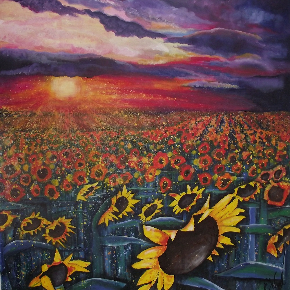 Sun on Sunflowers