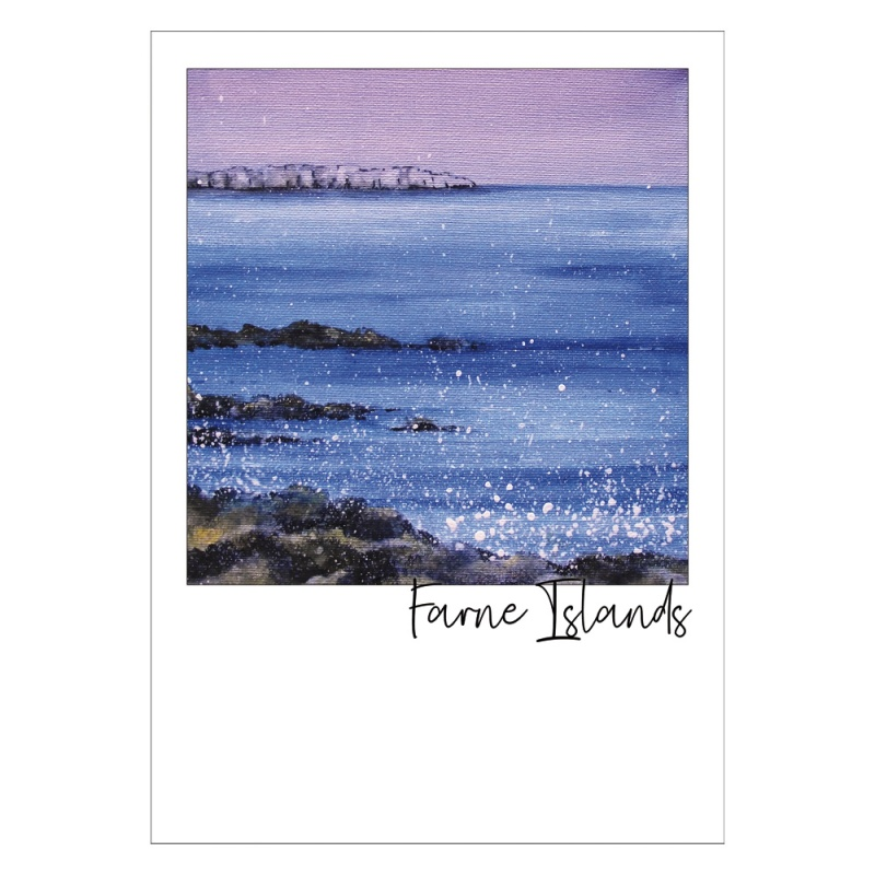 Farne Islands Post Card