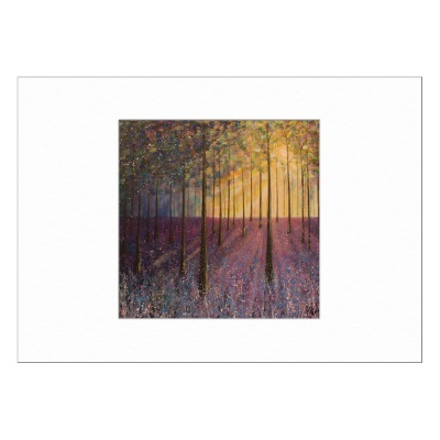 Bluebell Woods Limited Edition Print 40x50cm