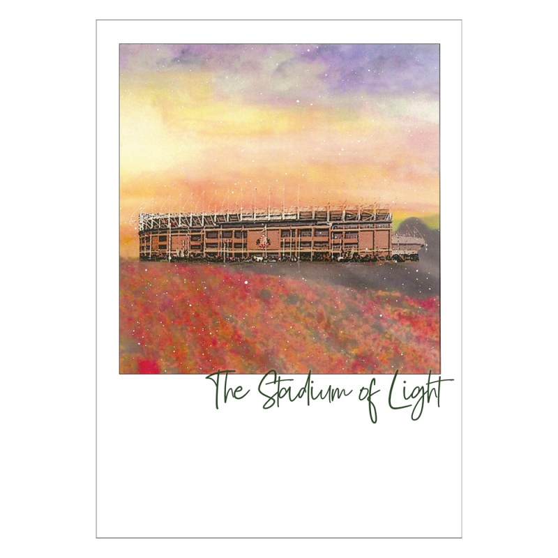 The Stadium of Light Magnet