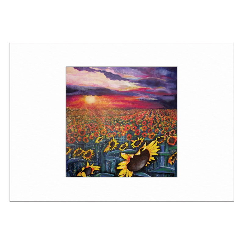 Sun on Sunflowers Limited Edition Print 40x50cm